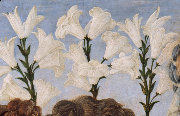 lilies 06-13-2021